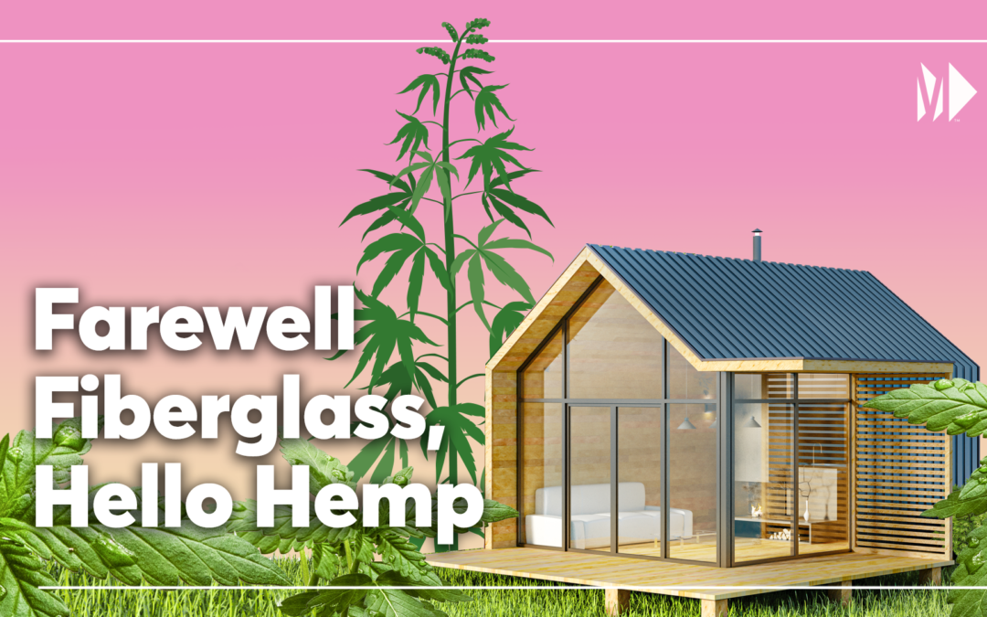 Building homes with hemp