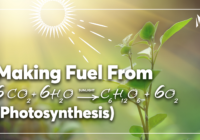 Making sustainable fuel out of sunlight and CO<sub>2</sub>